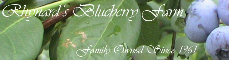 Rhynard's Blueberry Farm